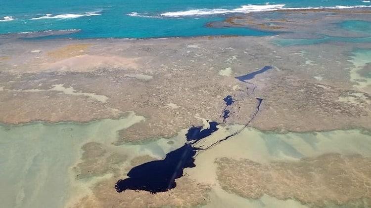 consequências do derramamento de óleo no mar do nordeste brasileiro 2019